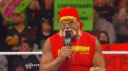 Hate Hulk Hogan